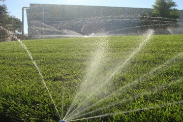Irrigation & Water Management